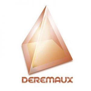 Logo DEREMAUX